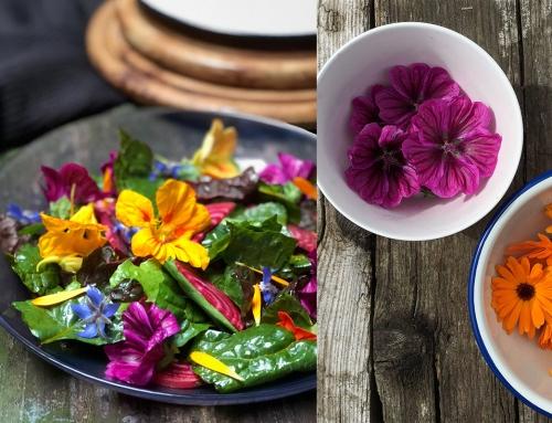 Flower power salade met eetbare bloemen